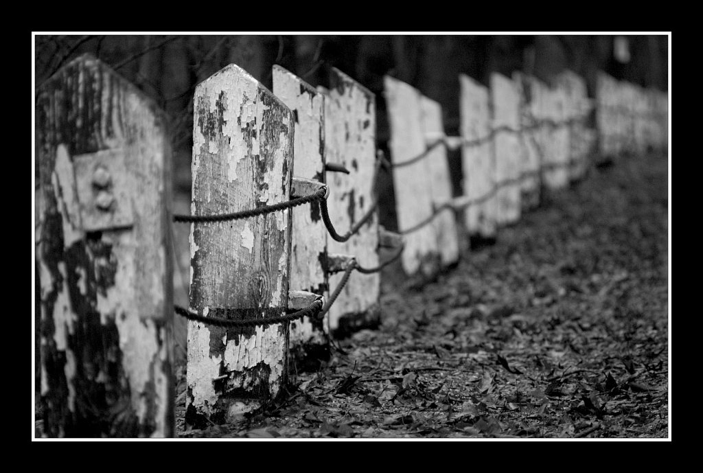 Endless Fence