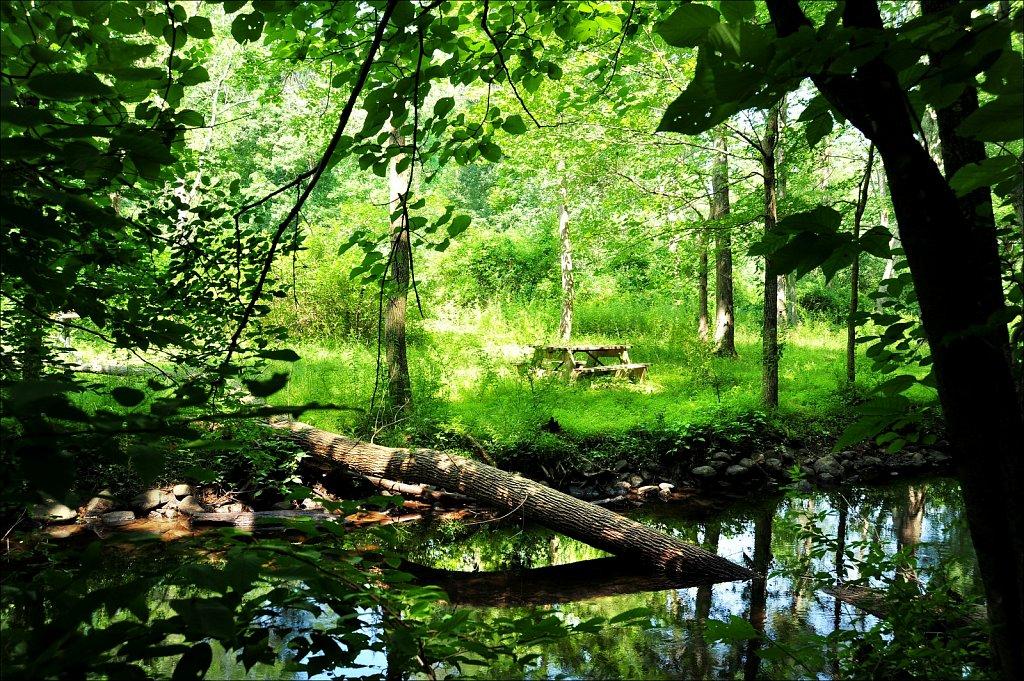 Stephen State Park