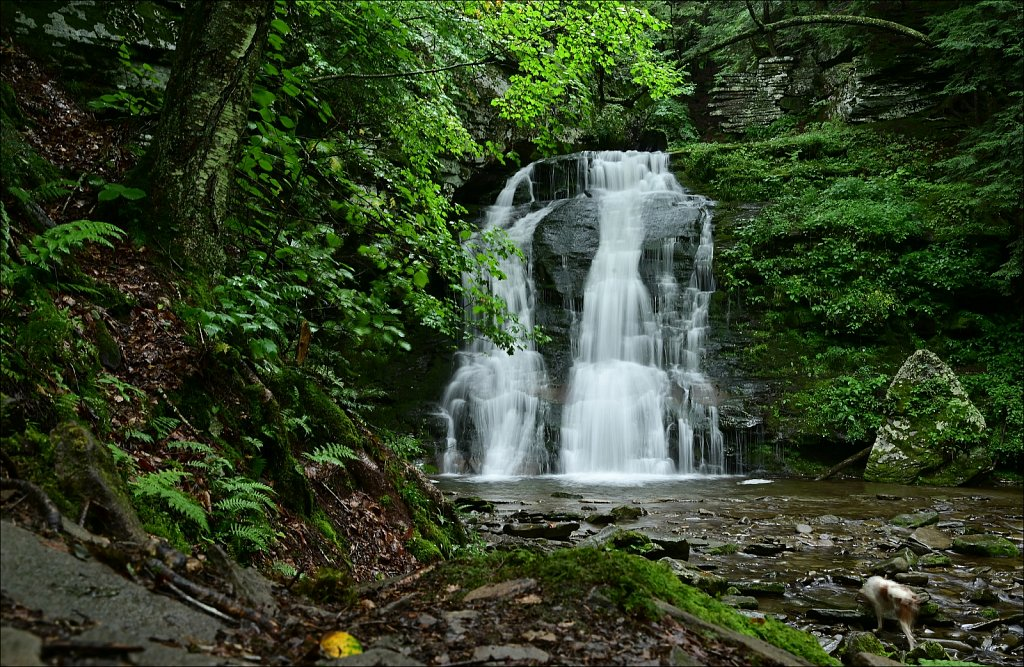 Russell Brook Falls